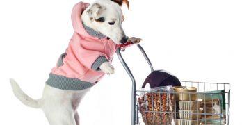 best dog food ingredients